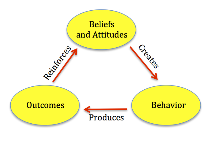 Beliefs Behaviour Outcome Cycle