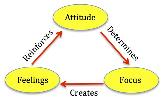 Attitude Focus Feeling Cycle